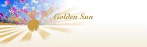 Agenda Praktijk Golden Sun Workshop en Cursus